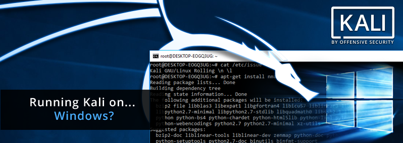 Kali Linux - Penetration Testing Distribution on Windows