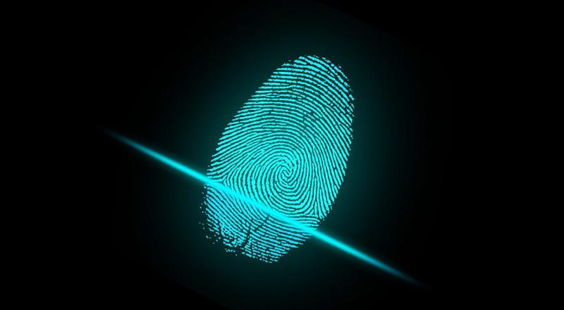 Modular Distributed Fingerprinting Engine – Scannerl