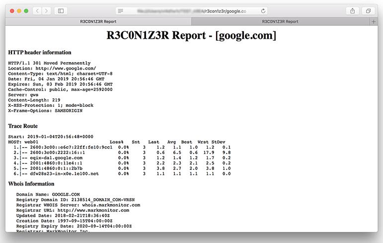 R3con1z3r report example